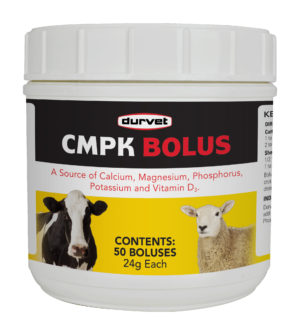 CMPK Bolus 50s