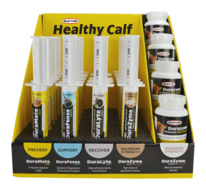 Healthy Calf Display 2.0 - 28 count